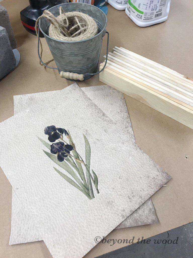 botanical-print-project