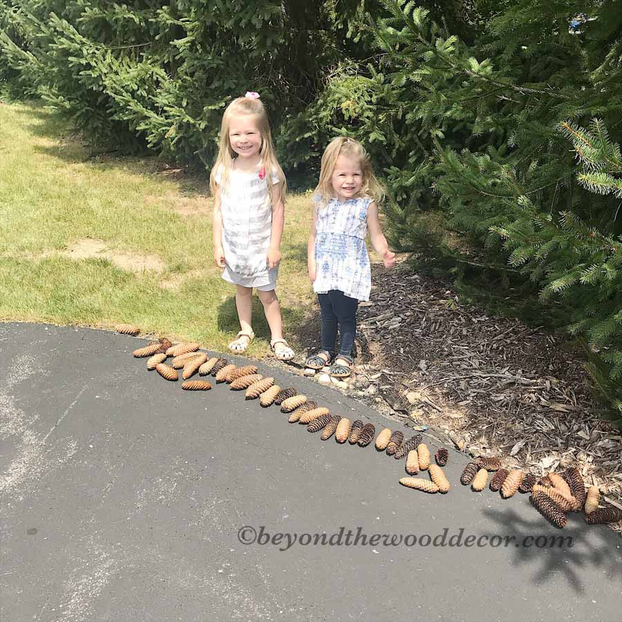 Beyond the Wood Decorating with Pine Cones